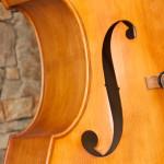 jim scianna trio music